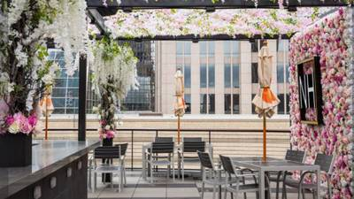 Rooftop bar, cigar lounge open in uptown