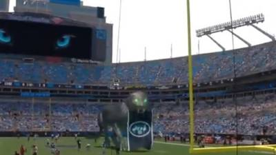 Watch: Carolina introduces mixed-reality panther for NFL game vs. Jets