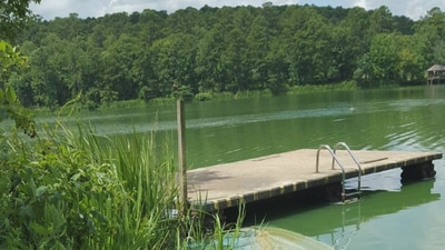 Toxic blue-green algae resurfaces in local ponds as temperatures rise
