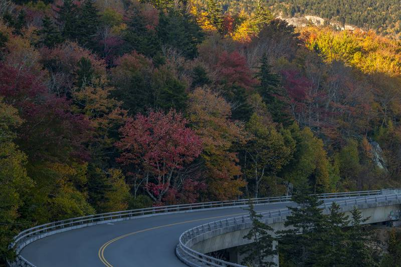 Foliage is bursting with color from this section of the parkway toward the Boone Fork area south of Blowing Rock, with more and more color making its way to lower elevations.