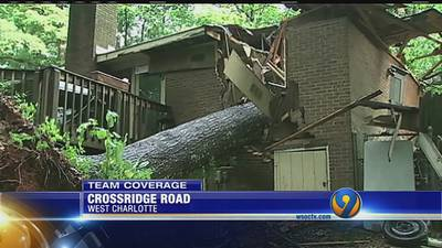Heavy rains knock out power, topple trees across Carolinas