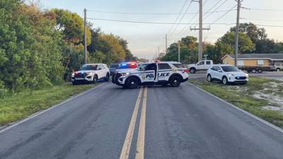 Girl trying to get to school bus injured in hit-and-run, police say
