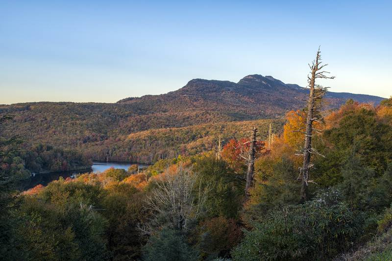 Grandfather Mountain spans the horizon with accompanying fall color, as seen from nearby Beacon Heights (milepost 305.2) on the Blue Ridge Parkway. Meanwhile, fall color works its way down Lost Cove Cliffs, as seen from the eponymous parkway overlook (milepost 310).