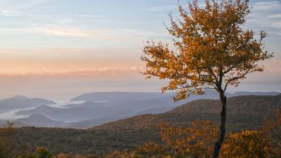 Here are the top 12 must-visit places in North Carolina for fall colors