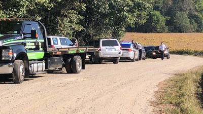 Man finds body while searching for brother's dog after crash, deputies say