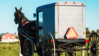 Amish parents die, 8 children hurt after horse-drawn buggy crash