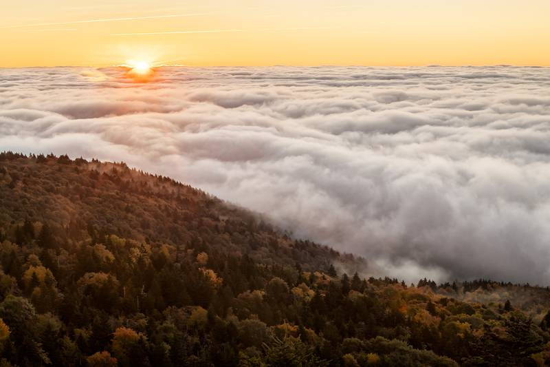 With clear weather in the extended forecast and the recent bout of warm weather having delayed color progression, visitors to the WNC High Country can expect a banner week for fall color viewing.