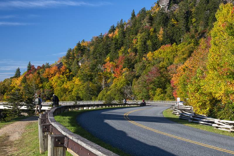 """The Linn Cove Viaduct area on the Blue Ridge Parkway is beaming with brilliant fall color. Experts anticipate this particular area and others nearby to reach peak color any day now. """"The Blue Ridge Parkway around Grandfather Mountain is peaking this week, including Rough Ridge and the Linn Cove Viaduct,"""" said Dr. Howie Neufeld, professor of biology at Appalachian State University and the WNC High Country's official Fall Color Guy. """"However, even if higher elevation sites are past peak, lower elevation sites will be coming into their best color over the next two weeks."""""""